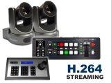 Roland V-1SDI with 2x PTZ Cameras Bundle